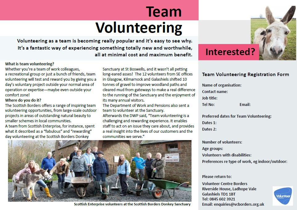 team volunteering brochure2